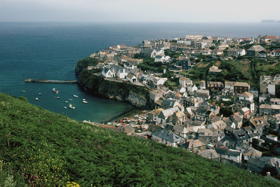 In the Heart of Port Isaac